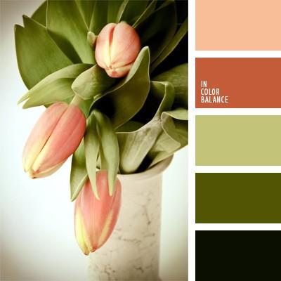 Оливковый цвет сочетание с другими цветами в интерьере фото
